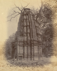 Ruined temple at Kanoda, Damoh District.